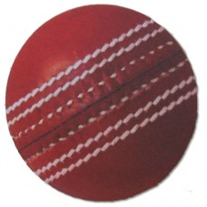 Cricket Ball Fridge Magnet