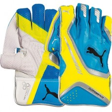 Puma Evopower 1 SE Wicket Keeping Gloves + Inners