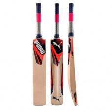 Puma Junior Evospeed 5GT Cricket Bat